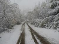 Снегопад на Ксеньевском перевале