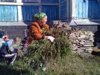 Субботник на территории Детской деревни